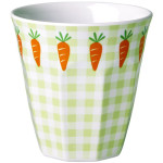 cup carrot