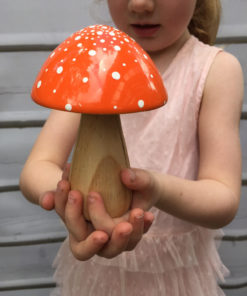 fairy toadstool orange