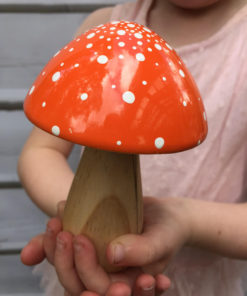 orange fairy toadstool