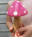 Pink Fairy Toadstool