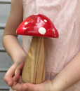 red fairy toadstool
